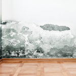 mold cleanup lbi, mold cleanup long beach island
